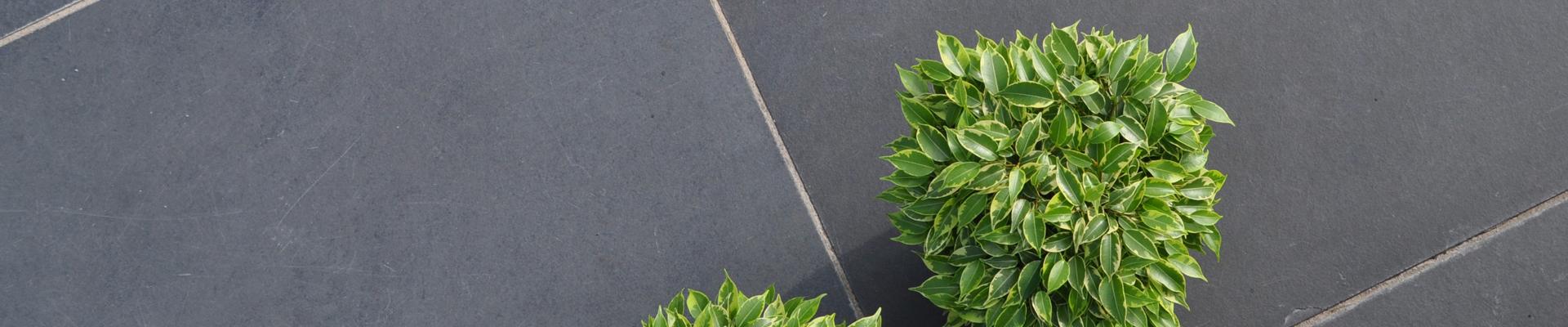 Bart Poppelaars Tuinmaterialen